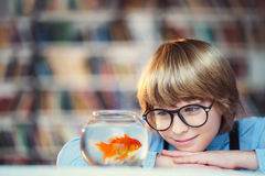 Boy with goldfish stock photography