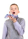 Boy got a Flu. Sick Young Boy got a Flu Isolated on the White Background royalty free stock image