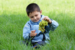Boy with grapes Royalty Free Stock Photography