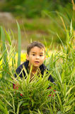 Boy in the grass Royalty Free Stock Photos