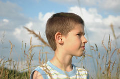 Boy in the grass Stock Photos