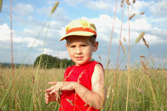 Boy in the grass Stock Image