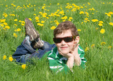 The boy is on the grass. With dandelions Stock Images