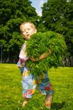 Boy in the grass. A boy collects the grass on the green lawn stock photography
