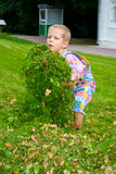 Boy in the grass. A boy collects the grass on the green lawn stock photos