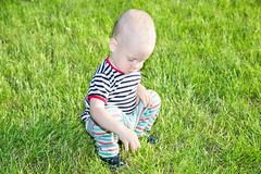 Boy on grass Stock Photography