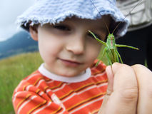 Boy with the grasshopper Royalty Free Stock Images