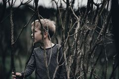 Boy in Gray Sweater Holding Leafless Branch in Tilt Shift Photography Stock Photography