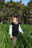 Boy in a green field Royalty Free Stock Image