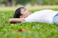 Boy on the green lawn Royalty Free Stock Images