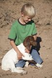 Boy green shirt with baby goat Stock Images