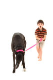 Boy with Greyhound over White Royalty Free Stock Images