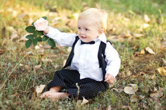 Boy in  the groom in a suit Royalty Free Stock Photo