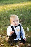 Boy in  the groom in a suit Stock Photo