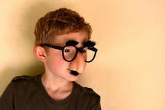Boy with groucho marx glasses Royalty Free Stock Photo