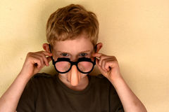 Boy with groucho marx glasses. Boy has fun with groucho marx glasses Royalty Free Stock Image