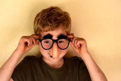 Boy with groucho marx glasses. Boy has fun with groucho marx glasses Stock Images