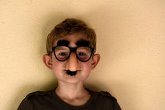 Boy with groucho marx glasses. Boy has fun with groucho marx glasses Royalty Free Stock Photos