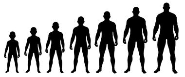 Boy growing up to Man silhouettes Royalty Free Stock Photography
