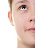 Boy half face. Portrait of a boy, half face isolated on white stock photos