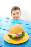 Boy and hamburger Royalty Free Stock Images