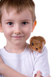 Boy with a  hamster Royalty Free Stock Image