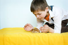 Boy and hamster. The boy with little syrian hamster Royalty Free Stock Photography