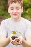 Boy hands holding young plant Stock Photo