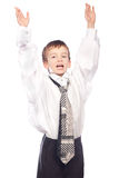 Boy is hands up Royalty Free Stock Photo