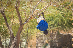 Boy hanging form branch upside down in Senegal, Africa Stock Photos