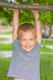 Boy hanging on a tree branch. Stock Image