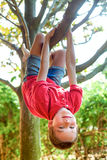 Boy hanging from a tree branch stock photography