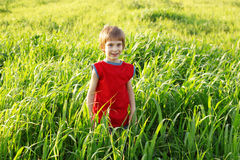 Boy happy on green wheat field Royalty Free Stock Photos