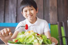 Boy happy ready to eat vegetable salad royalty free stock photography