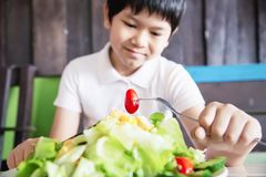 Boy happy ready to eat vegetable salad royalty free stock images