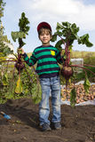 A boy with harvest. Pleased boy holding the harvest - two beets Stock Photo