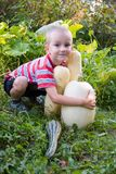 Boy with a harvest zucchini Stock Photo
