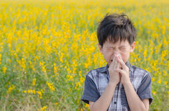 Boy has allergies from flower pollen. Little Asian boy has allergies from flower pollen in field Royalty Free Stock Images