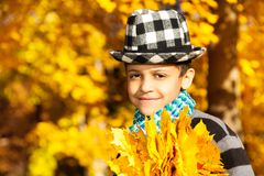 Boy in hat with maple leaves Stock Photos