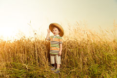 Boy in hat at summer wheat Royalty Free Stock Photos