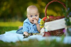 Boy have a picnic Stock Images