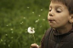 Boy having fun Stock Photos