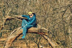 The boy is having fun in the tree . Spring walks royalty free stock images