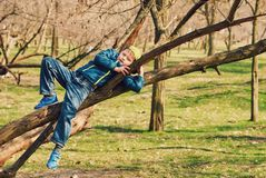 The boy is having fun in the tree . Spring walks royalty free stock photography