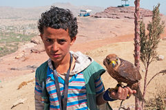 Boy, hawk, eagle, road, fortified cities, Yemen Royalty Free Stock Images
