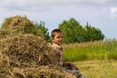 Boy and hay Royalty Free Stock Photography