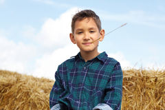 Boy on hay. Happy lad looking at camera in countryside Stock Images