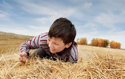 The boy and a haystack Stock Photo