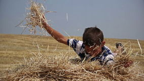 Boy on a haystack in a field of hay throws up, farmer boy in the village stock footage