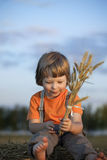 Boy in a haystack in the field Stock Image